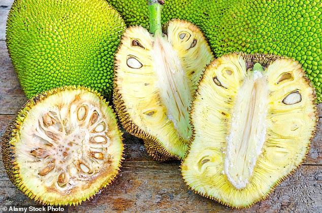 New enthusiasm: the huge jackfruit