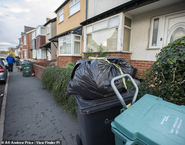 Residents have resorted to stockpiling waste in sheds and garages, but complain about rodent infestations