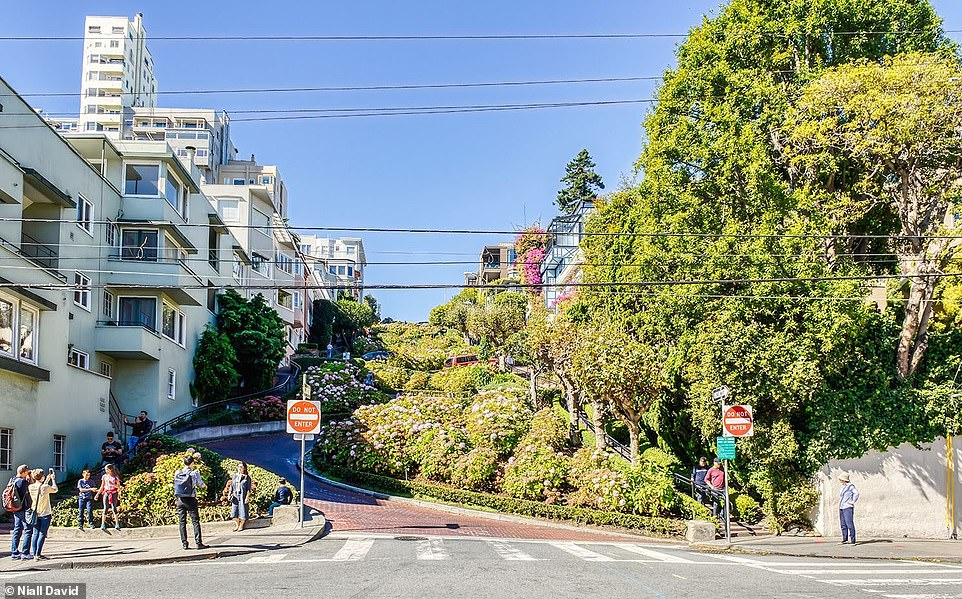 Today, tourists flock to Lombard Street, which is now decked out with flowers, plants, trees and shrubs