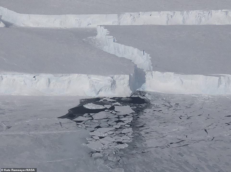 Se forma nuevo hielo marino en una grieta creada cuando el iceberg B-46 se separó del glaciar Pine Island.