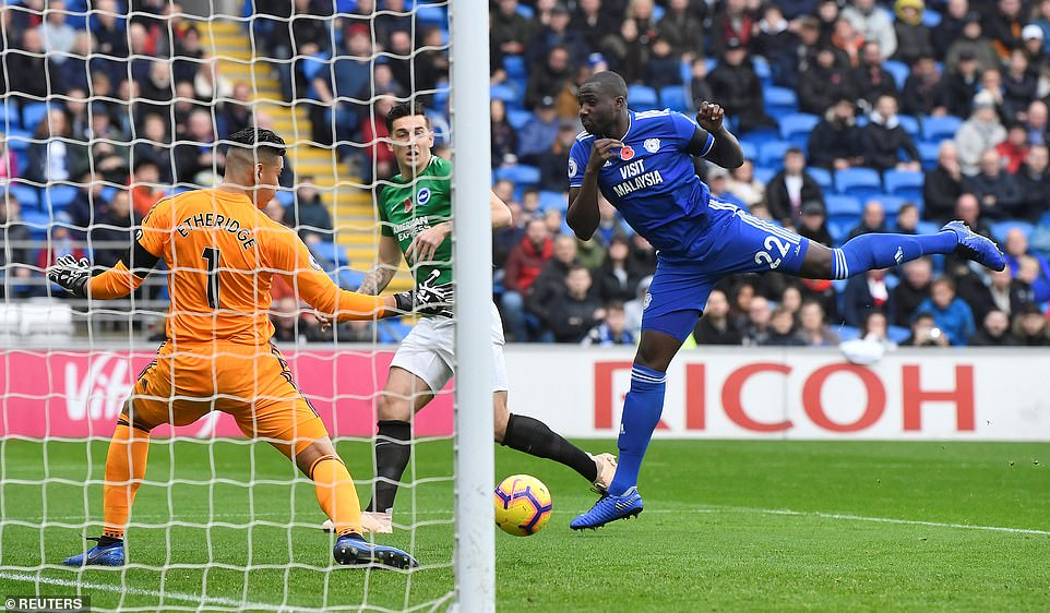 Dunk took his marker off the back and headed a header over Cardiff goalkeeper Neil Etheridge on the net