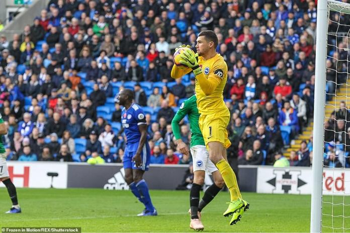 Brighton's goalkeeper, Ryan, jumps into the air to recover a weak effort from a Cardiff player