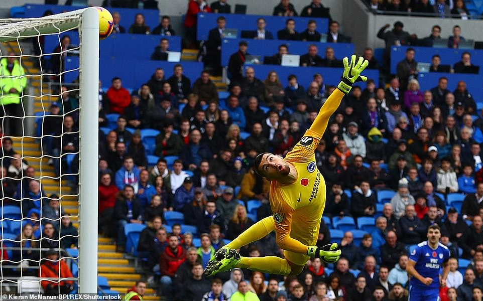 Brighton goalkeeper Mathew Ryan was defeated from all his conclusions by Harris's warp effort, but the cannons came back from the crossbar