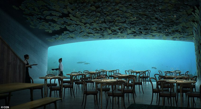 The structure, Snohetta says, will 'surface to lie against the craggy shoreline. The structure will become a part of its marine environment, coming to rest directly on the sea bed five meters below the water's surface'