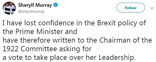 Cornish MP Sheryll Murray said she had also lost confidence in Mrs May's Brexit policy and wanted a vote on her future
