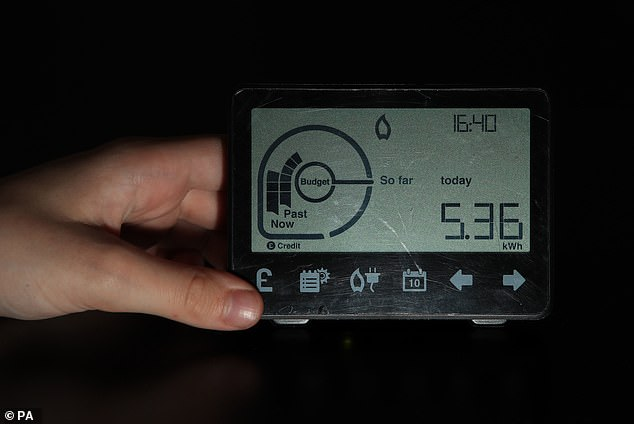 Plans to fit smart meters in every home by 2020 are doomed to fail ¿ but will still cost families at least £500million more than expected, a report reveals today. The rollout is running over budget, the spending watchdog said [File photo]