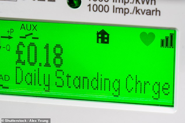 Smart meters show customers the cost of their energy in real time. It is hoped they will save households money by encouraging them to reduce the power they use [File photo]