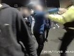 A youth attacks a police Police Community Support Officer, while other hoodies throw bricks and fireworks at officers