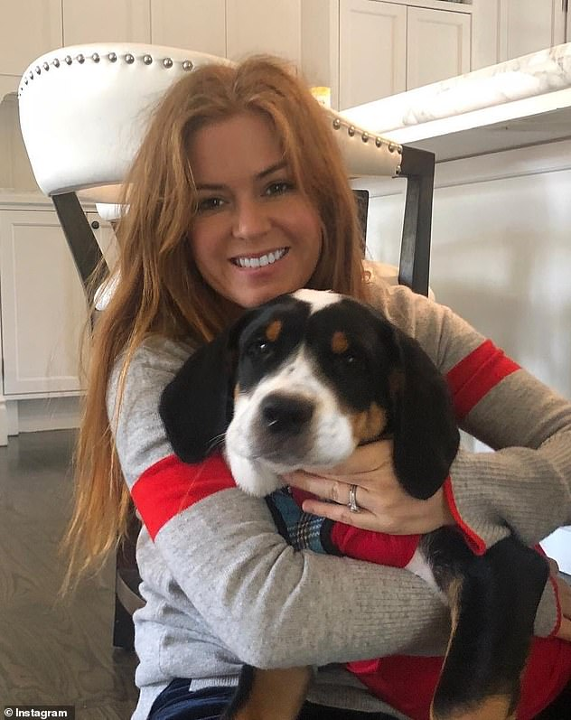 New addition: 'My easiest labor and he's already sleeping through the night': The lovable actress welcomed a Beagle into the family in November