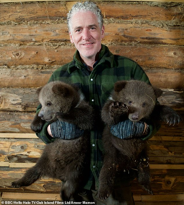 Gordon Buchanan, 46, (pictured with Pasha and Slava) documented the growth of orphaned grizzly bears in Russia for a new BBC2 programme