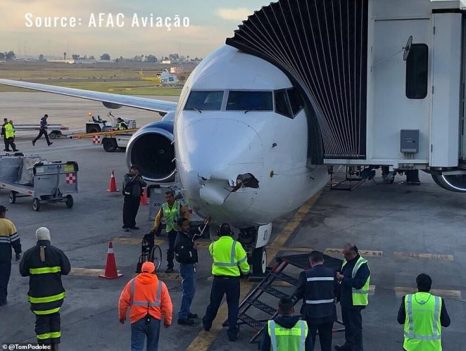 A Boeing 737-800, pictured, suffered damage to its nose on approach to Tijuana airport in December 2018 from a suspected drone
