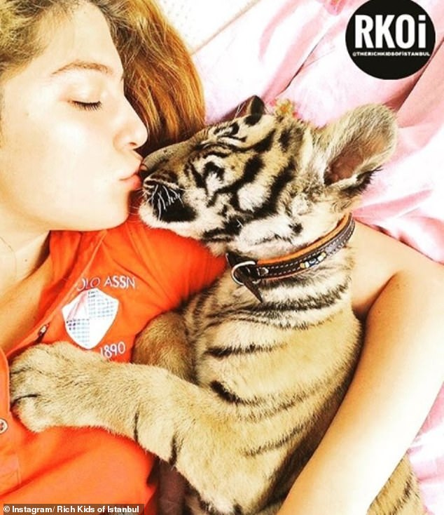 When it comes to pets this teen opt for something a little more exotic than your average moggy, in the form of a tiger cub