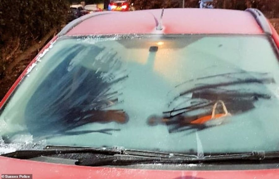 Officers immediately stopped the driver in Eastbourne who had just two small 'portholes' cleared on their iced-up windscreen