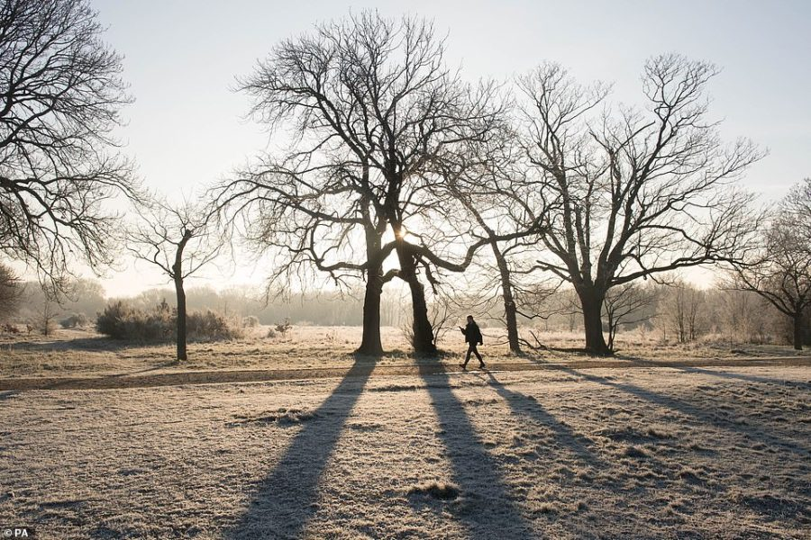 A heavy frost at Wanstead Park in North East London today as the Met Office issued snow, ice and fog warnings