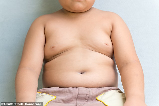 Single mothers are more likely to have obese children, research suggests (stock)