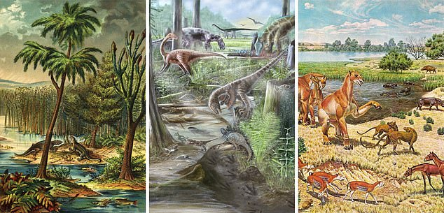 The diversity of species living on the planet has remained the same for 60 million years after the extinction of the dinosaurs, as new research shows. The impression of this artist shows top biodiversity values ​​(from left to right) 300, 110 and 15 million years ago. This rapid increase in biodiversity was followed by plateaus of the stability of species numbers that lasted tens of millions of years
