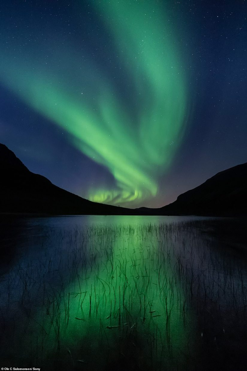 A stunning photo by Ole, showing the Northern Lights casting a green glow on a still body of water