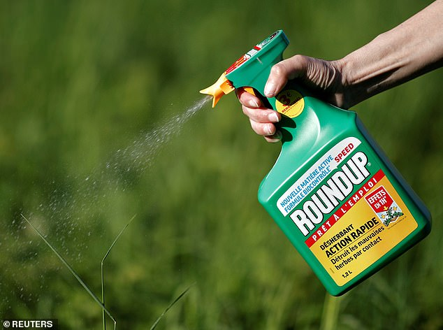 https://i2.wp.com/i.dailymail.co.uk/1s/2019/02/25/21/10276148-6744269-Glyphosate_the_most_common_herbicide_in_the_world_and_an_ingredi-m-7_1551129247073.jpg?w=736&ssl=1