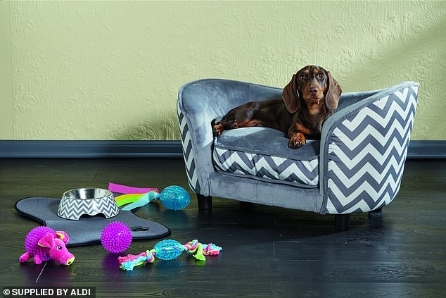 The popular pets collection that sold out at Aldi in 2018 is returning to stores - complete with the famed $59.99 luxury pet lounge
