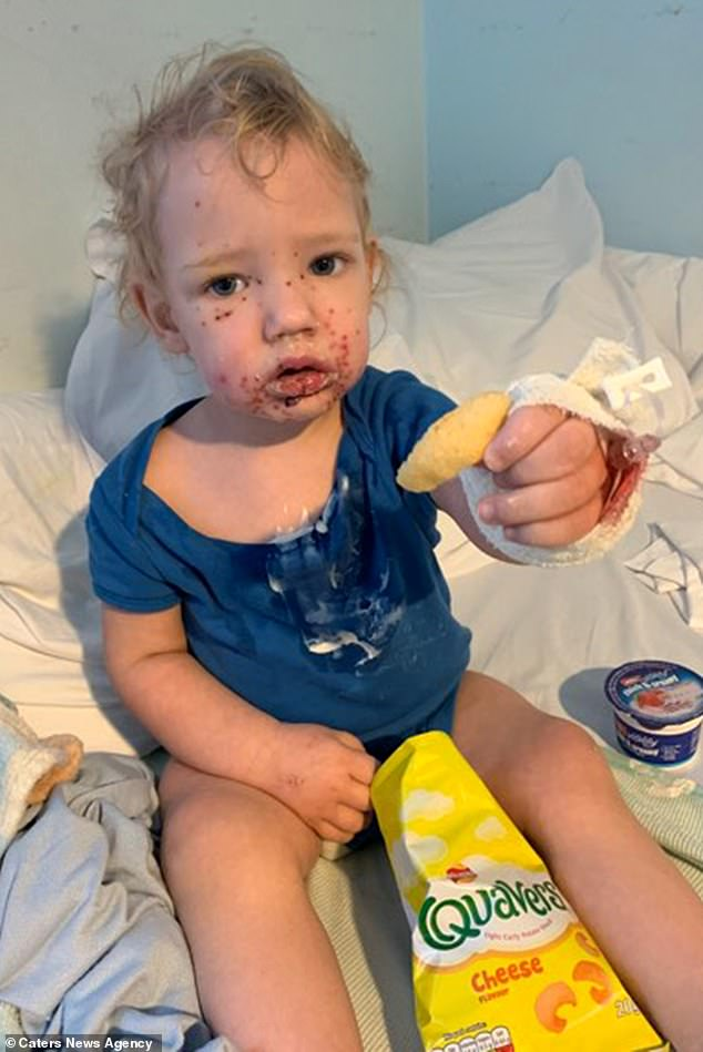 Ms Hoy said: 'As a family never thought this would happen to us but we're so lucky that Kalo pulled through after his treatment'