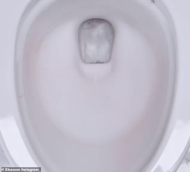 Spreading it around the toilet bowl, it is left to settle before being flushed- and along with a little elbow grease from a brush leaves the toilet in sparkling condition