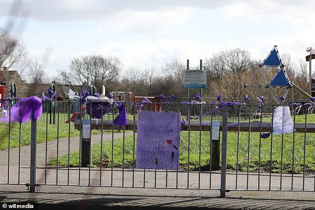 Tributes consisting of purple ribbons continued to be made to Jodie Chesney at St Neots Road park