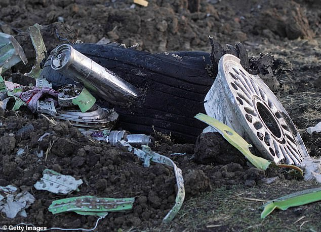 Aftermath: Parts of the plane's landing gear lie in the soil at the crash site some 40 miles from Addis Ababa