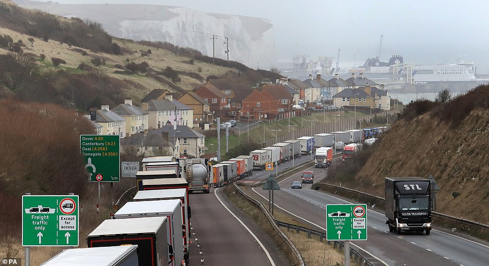 Lorries queue at the entrance to the Port of Dover in Kent as bad weather causes cross Channel ferry delays
