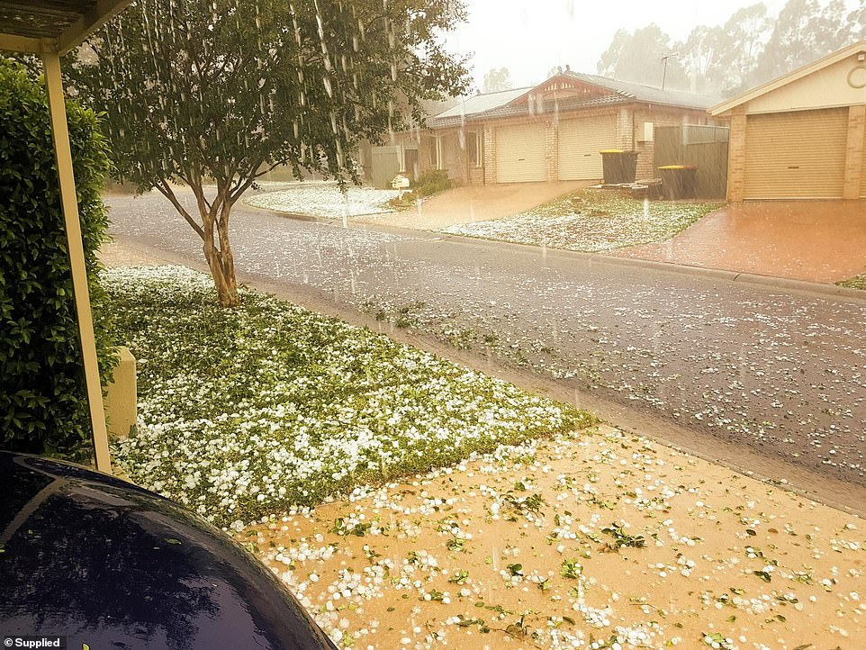 This dramatic photo was sent to Daily Mail Australia by Stanhope Gardens resident Satya Antil in Sydney's north-west