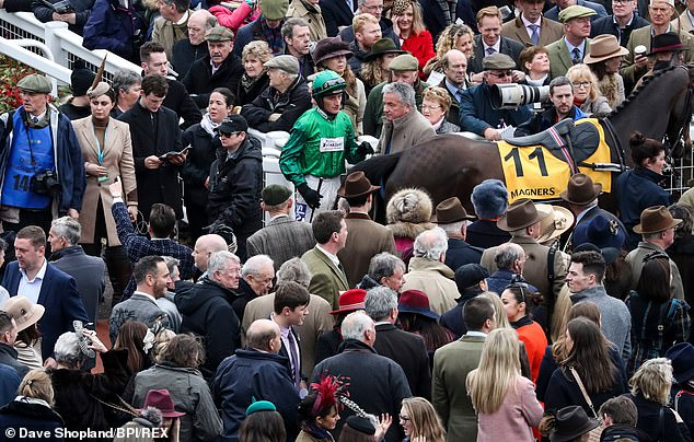 Ferguson was seen among the Cheltenham crowd as No 11 Might Bite made her way to the post