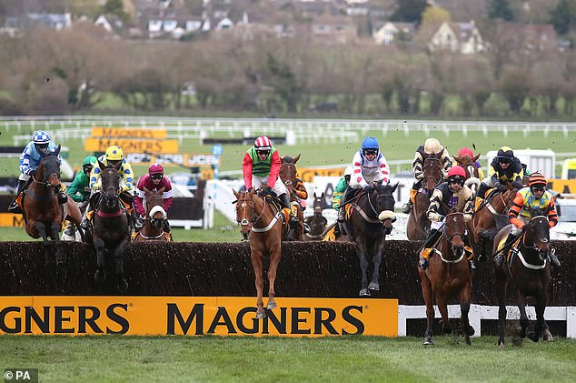 Ferguson owns a stake in Clan Des Obeaux (center right), who ran in the Gold Cup on Friday