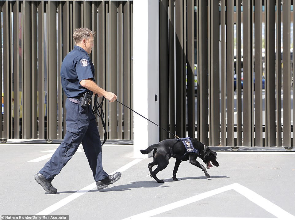Heavily armed police and sniffer dogs were also called in, but police commissioner Mike Bush said there was 'no intelligence about current imminent threats'