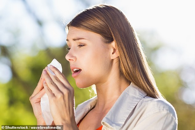 The research could lead to new treatments, such as drugs that rev up immune cells that are extra-active in those with hay fever [File photo]