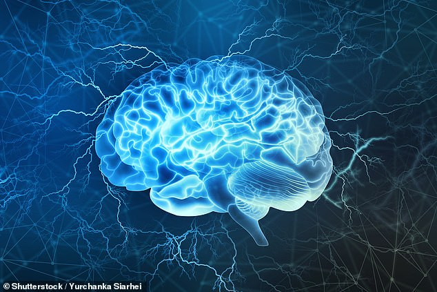 Alzheimer's disease, the most common cause of dementia, is caused by a toxic build-up of proteins in the brain which cause nerve damage. Many more people may have early signs of this build-up than have signs of dementia, an expert said (stock image)