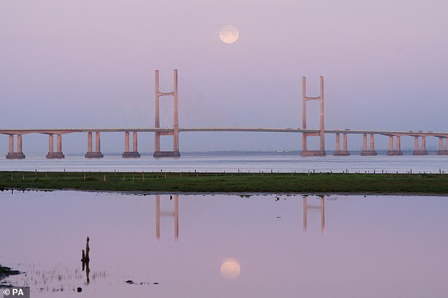 Stargazers around the world will be treated to a stunning astronomical display of a full Pink Moon on Good Friday. April's full moon, also known as a 'Pink Moon', over the Bristol Channel last year