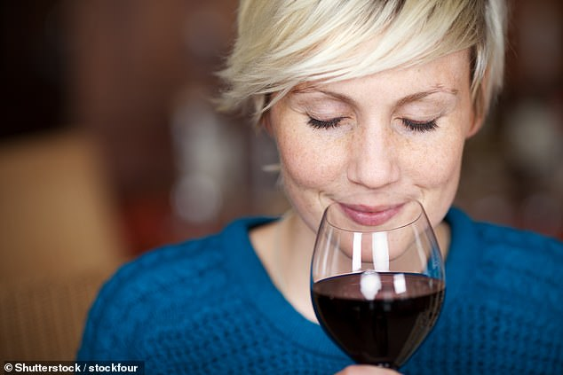 Red wine is better than spirits due to its antioxidants 'feeding' our gut bacteria (stock)