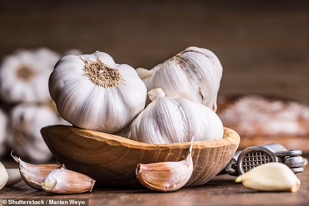Garlic is fermented by bacteria in the colon, which leads to excess gas production (stock)
