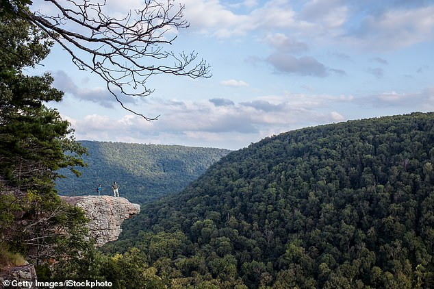 Police said Norton fell off the Hawksbill Crag, which is a popular hiking destination and rock formation in the forest near Jasper. It isconsidered one of Arkansas' most-photographed hiking areas