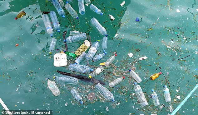 Europe produces 60million tons of plastic every year, of which 27.1million are recovered for recycling, incinerated or placed in landfill