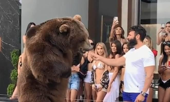 Image result for dan bilzerian bear