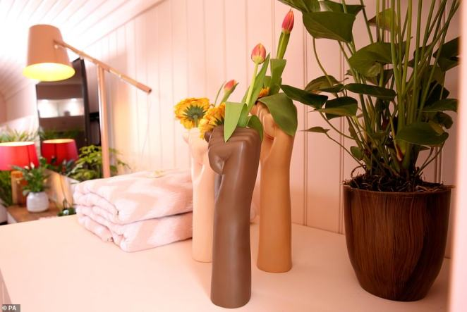 The living room has potted plants to create a homely feel as well as scatter cushions for comfy relaxation