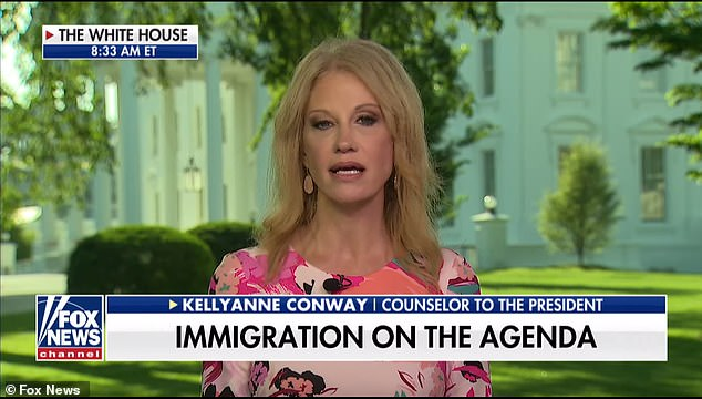 Kellyanne Conway, counselor to the president, suggested to DailyMail.com and other reporters Tuesday morning that the new plan would be similar to one Trump sent to Congress his first year in office
