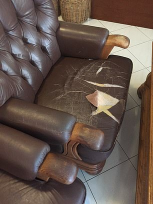 One of  Mr Thompson's pictures shows a ripped leather armchair in the lobby