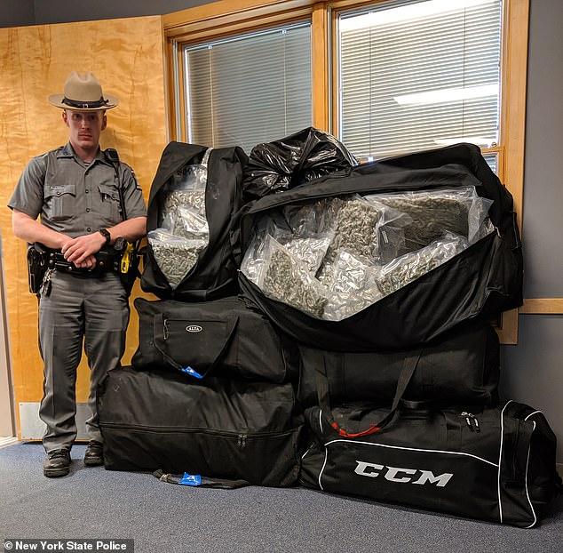 A New York State trooper stands next to 200 pounds of marijuana allegedly seized from two residents of upstate New York on Friday