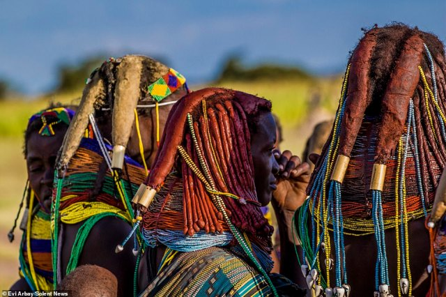 Women use a mixture ofoil, crushed tree bark, butter, dried cow dung and herbs to shape their hair into thick dreadlocks, typically numbering between four and six, though there can be more