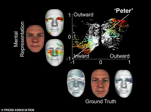 Scientists have created a 3D-reconstruction of a face using