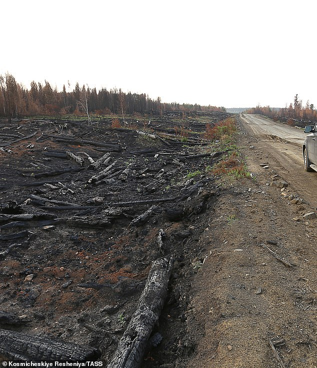 Despite Putin¿s claims that the situation is being dealt with by the military, it¿s unclear whether the Russian government actually possess the infrastructure to tackle such overwhelming fires in such remote regions