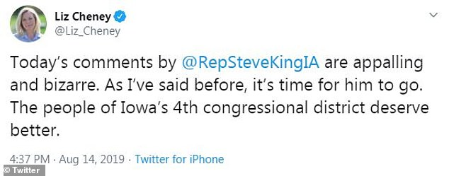 GOP leader Liz Cheney was one of the few Republicans to speak out against King immediately after his statements