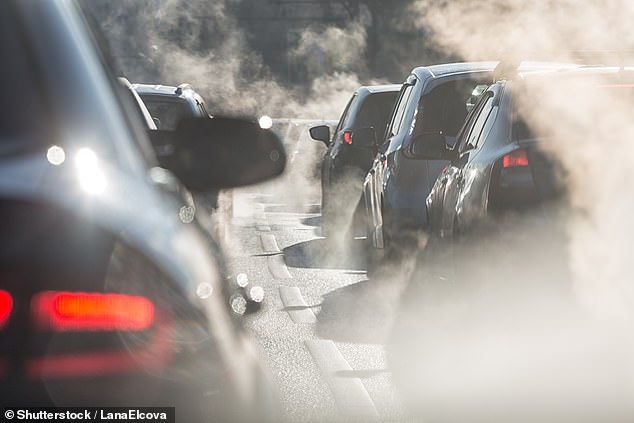 Experts say there is 'no safe level' of PM2.5 air pollution, which comes from exhaust fumes (stock image)