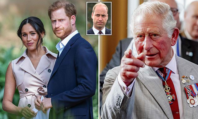 Prince Harry 'ignored advice of senior aides' over attack of the press